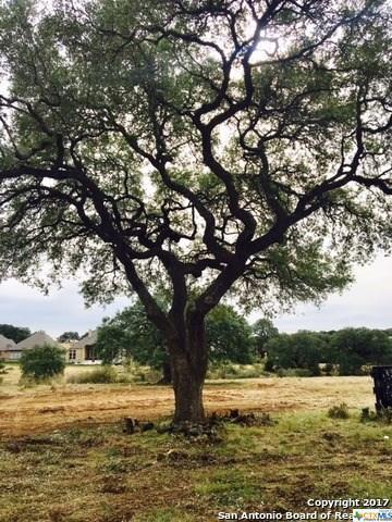 611 Battistrada, New Braunfels, TX 78132 (MLS #356521) :: Magnolia Realty