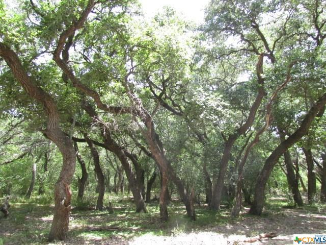 Lot 6 Old Highway Rd, Victoria, TX 77988 (MLS #356703) :: Kopecky Group at RE/MAX Land & Homes