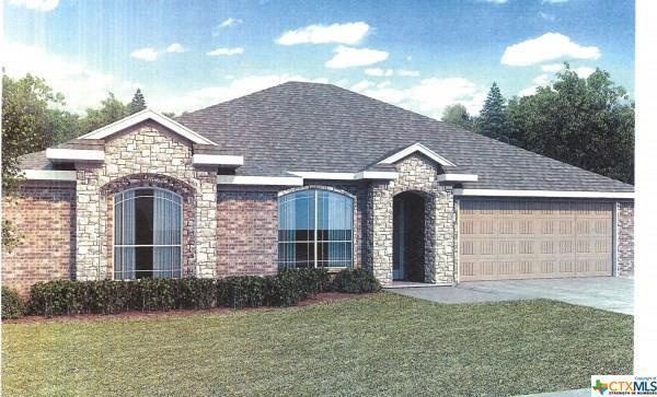 2513 Liberty Park Court, Belton, TX 76513 (MLS #356919) :: Magnolia Realty