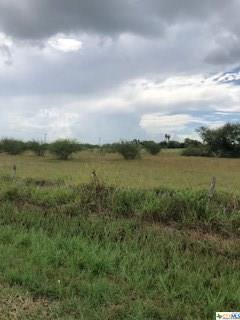 000 Coletoville Rd., Victoria, TX 77905 (MLS #358188) :: Magnolia Realty