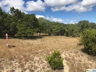 174 Deepwell, Canyon Lake, TX 78133 (MLS #358725) :: Magnolia Realty