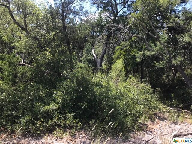 19935 Terra Canyon, San Antonio, TX 78255 (MLS #359118) :: Magnolia Realty