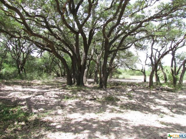 Tract 3 Old Highway Rd, Telferner, TX 77988 (MLS #359506) :: Magnolia Realty