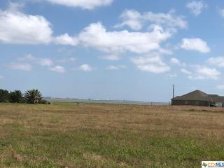 Tract 1 Bay Meadows, Port Lavaca, TX 77979 (MLS #359539) :: Berkshire Hathaway HomeServices Don Johnson, REALTORS®