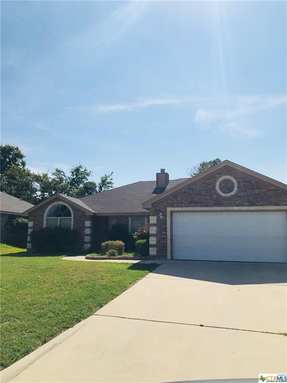 218 Nolan Ridge, OTHER, TX 76559 (MLS #360736) :: Vista Real Estate