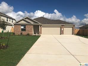 304 Jackson Blue Ln Lane, Kyle, TX 78640 (MLS #360884) :: Erin Caraway Group