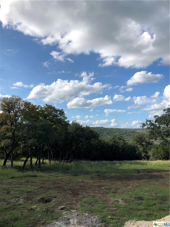 157 Ash Juniper, New Braunfels, TX 78132 (MLS #360949) :: Magnolia Realty