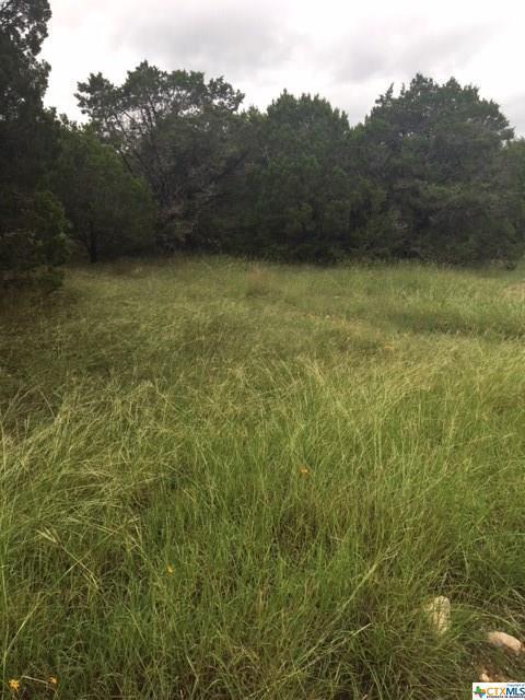 1593 Hallmark Drive, Canyon Lake, TX 78133 (MLS #361052) :: RE/MAX Land & Homes