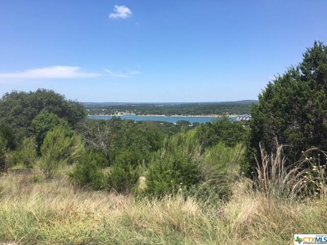 21504 Porter, Lago Vista, TX 78645 (#363305) :: Realty Executives - Town & Country
