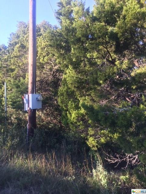 Lot 796 Laurie, Canyon Lake, TX 78133 (MLS #363524) :: Berkshire Hathaway HomeServices Don Johnson, REALTORS®