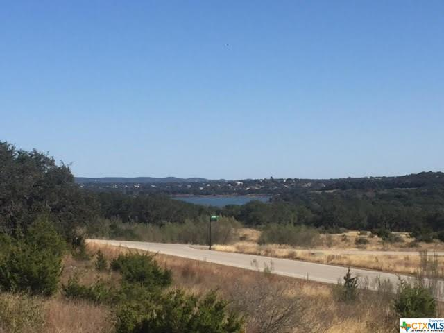 1110 Presidio, Canyon Lake, TX 78133 (#365696) :: Realty Executives - Town & Country