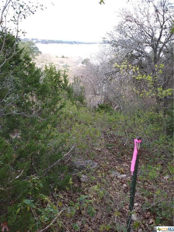 2123 Lakeview Drive, Canyon Lake, TX 78133 (MLS #365802) :: Vista Real Estate