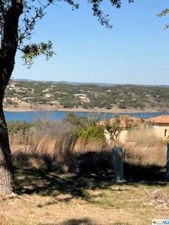 1781 Bella Vista, Canyon Lake, TX 78133 (MLS #367986) :: Vista Real Estate