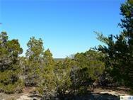 115 Timberline, Wimberley, TX 78676 (MLS #370050) :: Vista Real Estate