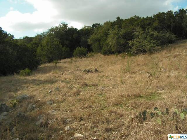 536 Toye Boulevard, Canyon Lake, TX 78133 (MLS #370676) :: Vista Real Estate