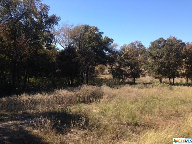 401 Samuel Robbins, Luling, TX 78648 (MLS #371978) :: Vista Real Estate
