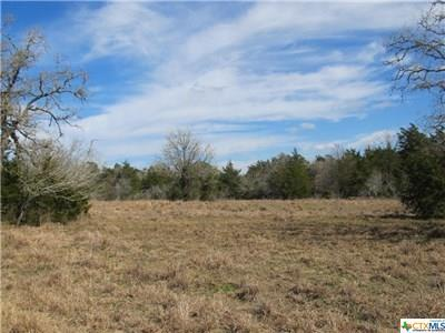 6824 Fm 2237, OTHER, TX 78941 (MLS #372051) :: Kopecky Group at RE/MAX Land & Homes