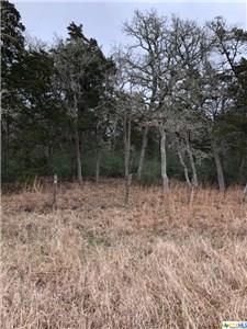 1775 Slo John, Flatonia, TX 78941 (MLS #372075) :: Kopecky Group at RE/MAX Land & Homes