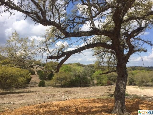 Lot 1712 Cattle Dell, New Braunfels, TX 78132 (MLS #372910) :: Magnolia Realty