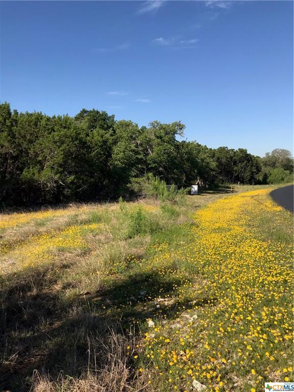 2311 Haven Bluff, New Braunfels, TX 78132 (MLS #376321) :: Erin Caraway Group