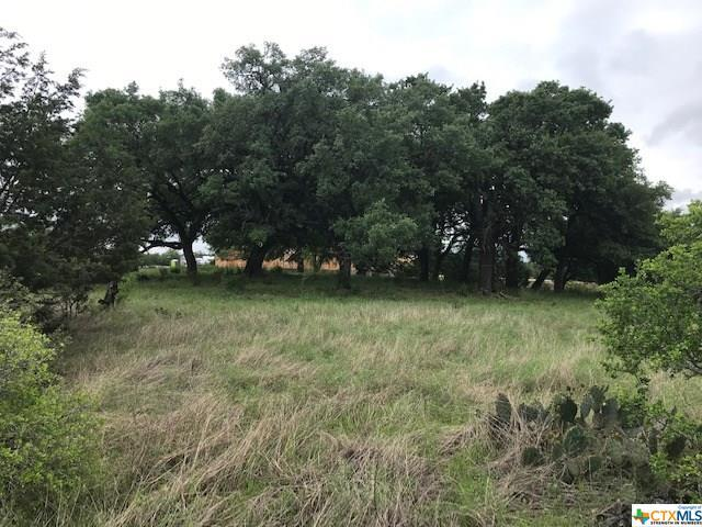 LOT 1847 Tenderfoot, New Braunfels, TX 78132 (MLS #378635) :: Erin Caraway Group