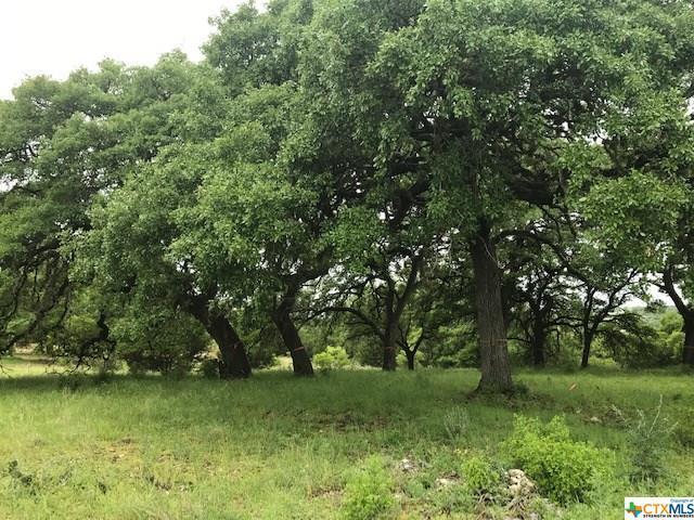 LOT 1846 Tenderfoot, New Braunfels, TX 78132 (MLS #378642) :: Erin Caraway Group