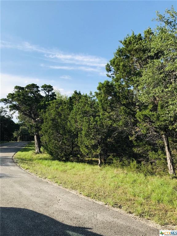 167 Oak Summit, Canyon Lake, TX 78133 (#378796) :: Realty Executives - Town & Country