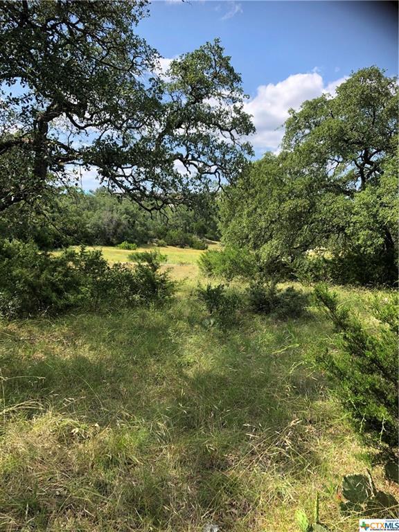 320 Copper Trace, New Braunfels, TX 78132 (MLS #379057) :: Vista Real Estate