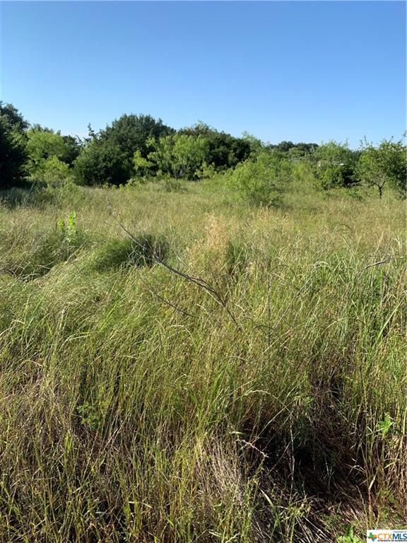 000 County Rd 229, Florence, TX 76527 (MLS #379151) :: The Graham Team