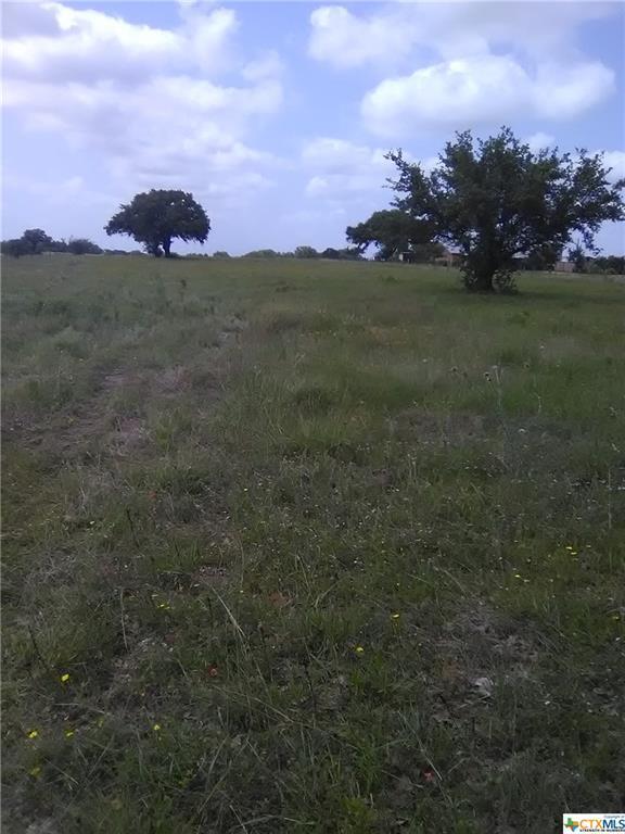 00 Fm 1447 E, Cuero, TX 77954 (MLS #379469) :: RE/MAX Land & Homes