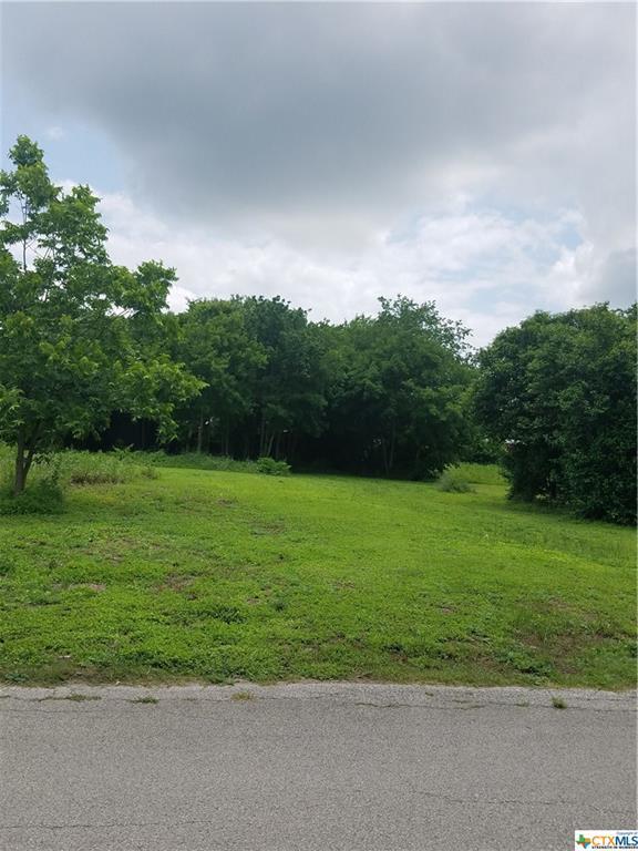 501 E Pine Street, Seguin, TX 78155 (MLS #379888) :: Vista Real Estate