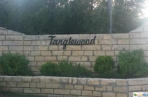 5572 Cliff Lane, Temple, TX 76502 (MLS #381311) :: Vista Real Estate