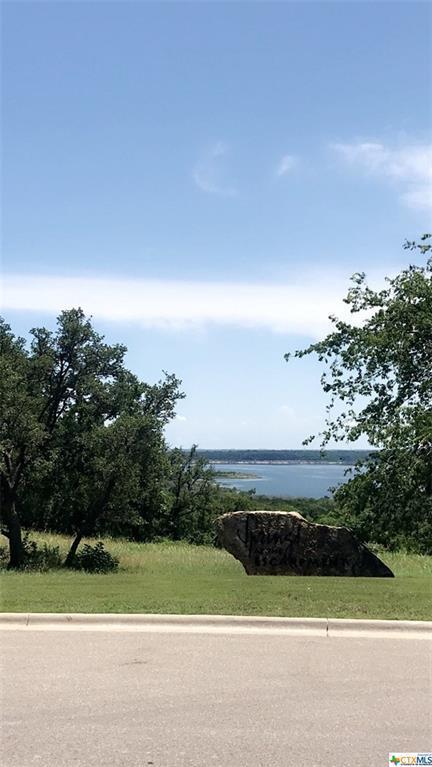 1542 Niagara Heights, Belton, TX 76513 (MLS #381758) :: Vista Real Estate