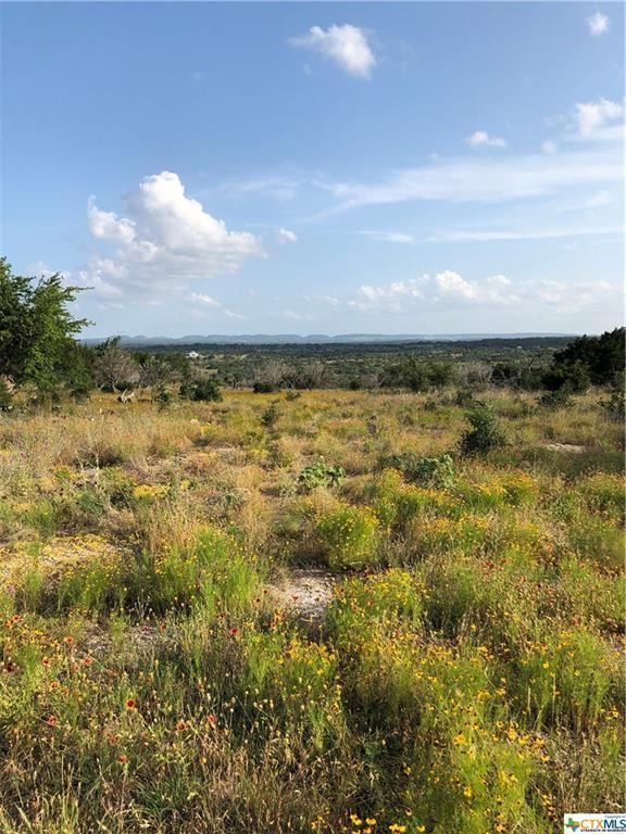 TBD Cactus Trail, Johnson City, TX 78636 (MLS #383178) :: Vista Real Estate