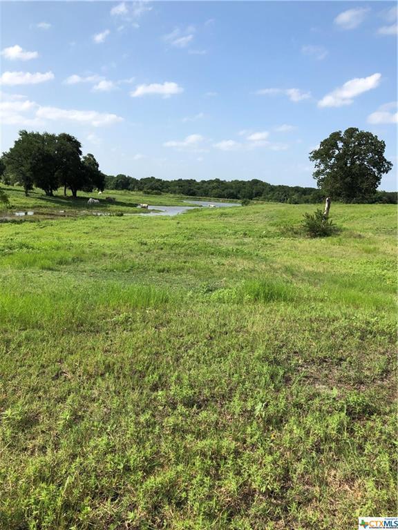000 Fm 671, Luling, TX 78648 (MLS #383484) :: Vista Real Estate