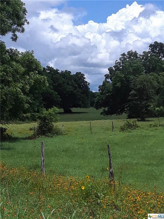 TBD County Road 214, Hallettsville, TX 77995 (MLS #383670) :: The Zaplac Group