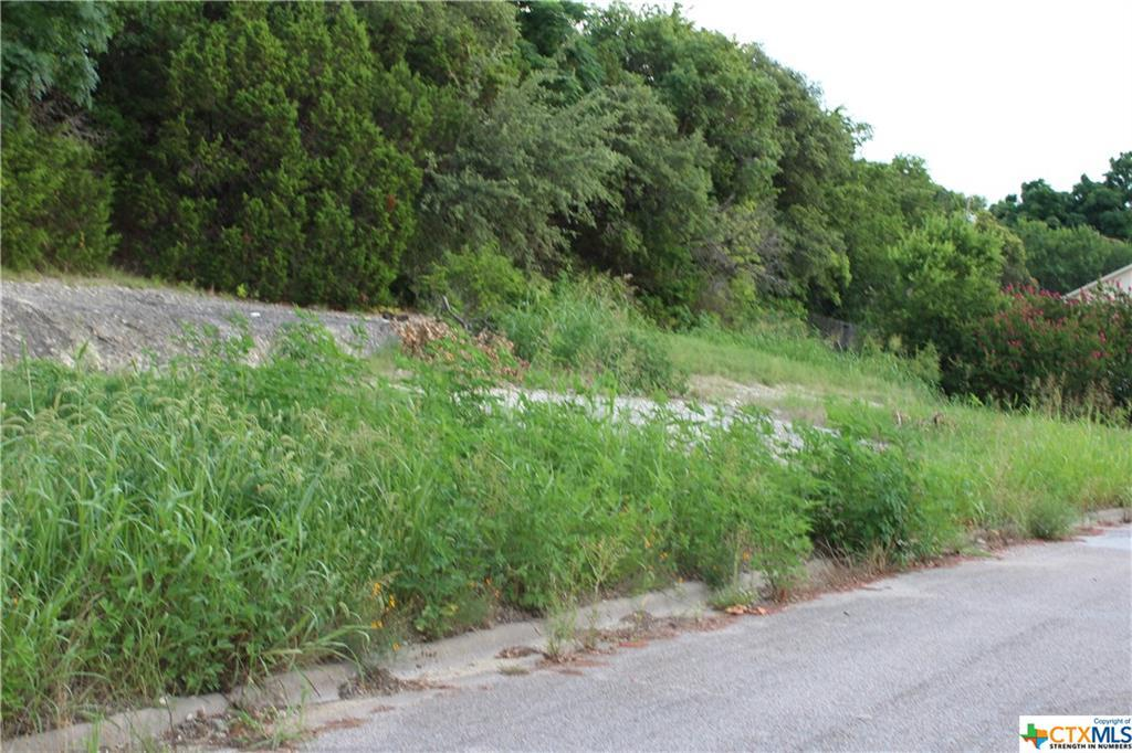 819 Cliffside Drive - Photo 1
