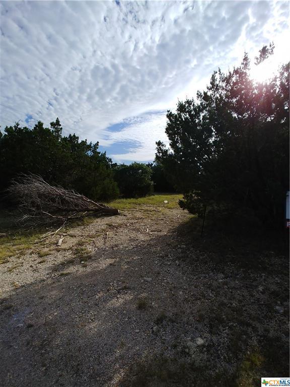 TBD County Road 4830, Kempner, TX 76539 (MLS #384184) :: The Real Estate Home Team