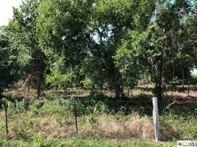00 S Hwy 119/Fechner Rd, Yorktown, TX 78164 (MLS #384356) :: Kopecky Group at RE/MAX Land & Homes