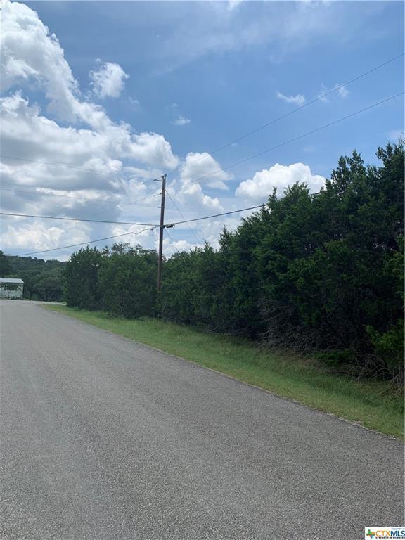 730 Minnesota Drive, Canyon Lake, TX 78133 (MLS #384770) :: Vista Real Estate
