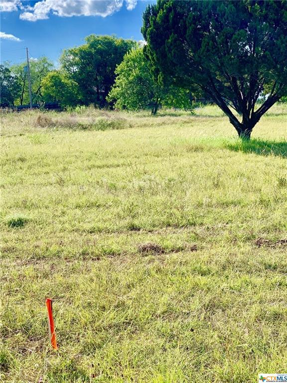106 Woodhollow Road, Gatesville, TX 76528 (MLS #384963) :: The Real Estate Home Team
