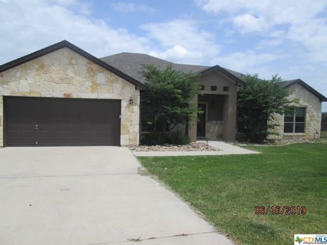 1041 Jewel Lane, Salado, TX 76571 (#385136) :: Realty Executives - Town & Country