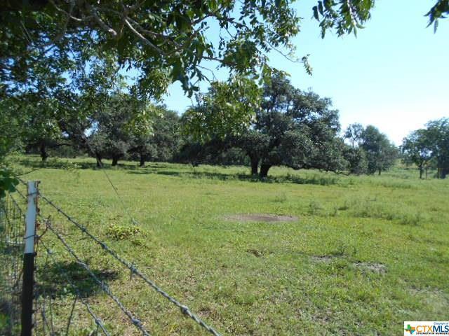 000 N Duval, Goliad, TX 77963 (MLS #385909) :: The Zaplac Group
