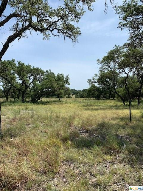 00 Cr 108 #196, Lampasas, TX 76550 (MLS #387189) :: Vista Real Estate
