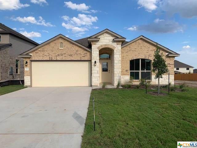5513 Perdita Drive, Belton, TX 76513 (MLS #390079) :: The Graham Team
