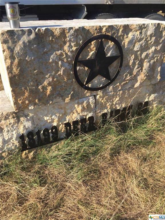 18199 Deer Ridge Road, Moody, TX 76557 (MLS #391993) :: The i35 Group