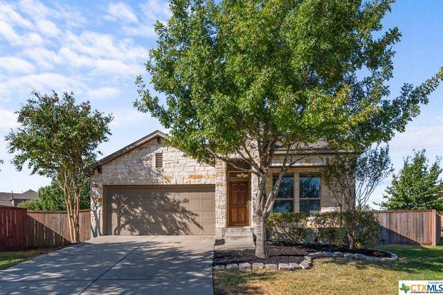 1117 Sunny Meadows Loop, Georgetown, TX 78626 (MLS #392330) :: Marilyn Joyce | All City Real Estate Ltd.