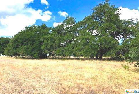 TBD W U. S. Highway 290, Hye, TX 78635 (MLS #392371) :: Berkshire Hathaway HomeServices Don Johnson, REALTORS®