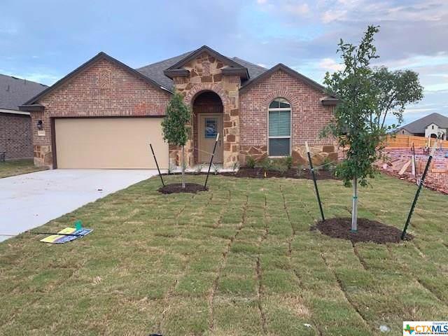 5585 Perdita Drive, Belton, TX 76513 (#392541) :: 12 Points Group