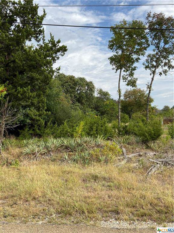 0000 Begonia Trail, OTHER, TX 76513 (MLS #392630) :: Vista Real Estate